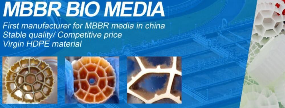 China best MBBR Bio Media on sales